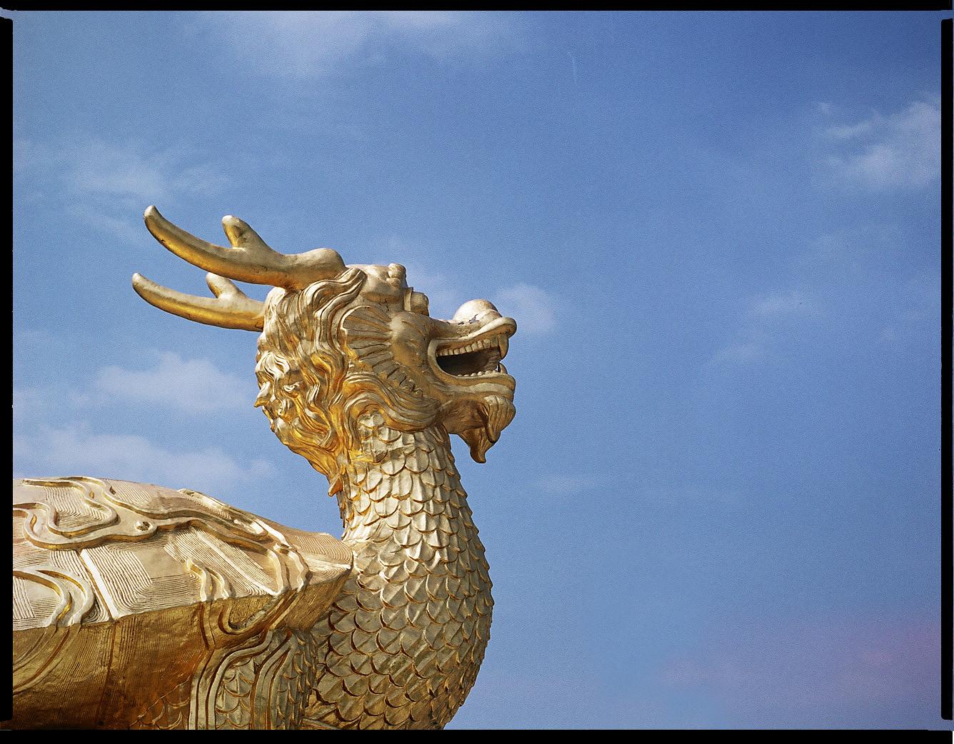 MediumFormatPatrikWallner_Gongguan_GoldenDragonPowerfulLOWQ