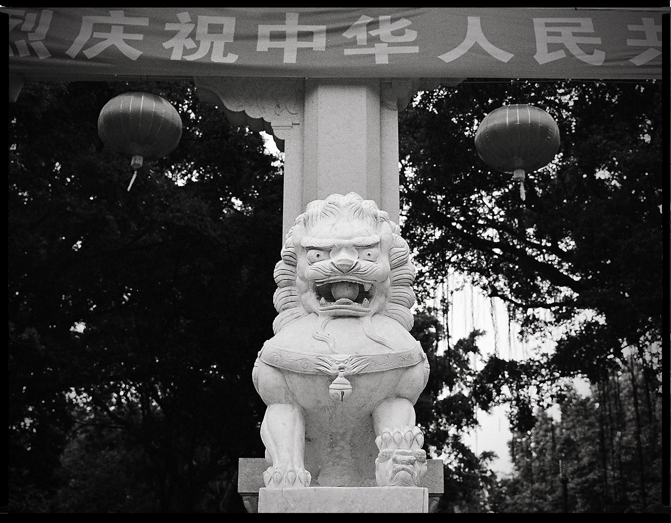 MediumFormatPatrikWallner_Huizhou_DragonWaitingLOWQ