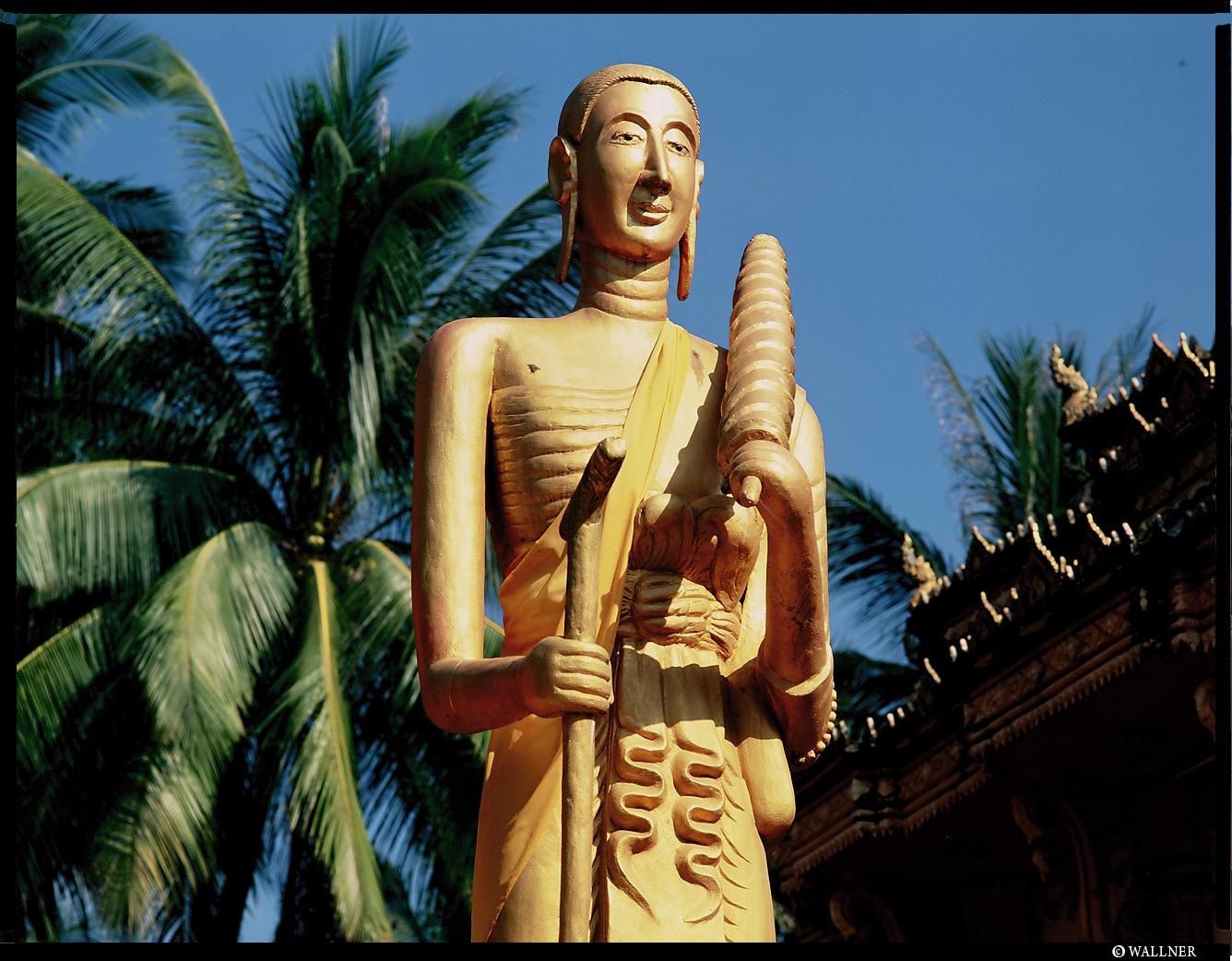 MediumFormatPatrikWallner_Vientiane_SkinnyLongEarsLOWQ