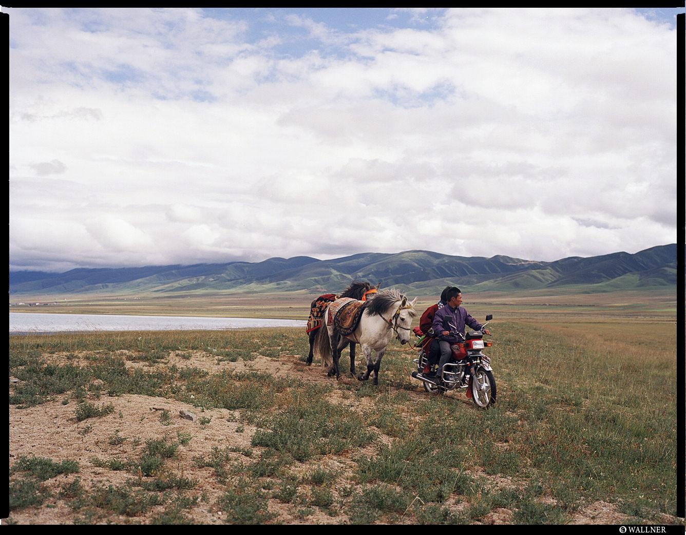 MediumFormatPatrikWallner_Qinghai_HorseNotAsUsefulAnymoreLOWQ