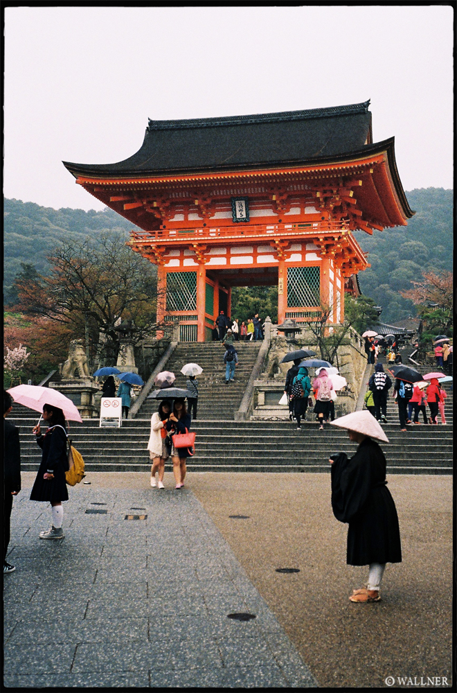 35mmPatrikWallner_Kyoto_RainyKyotoLOWQ1000P