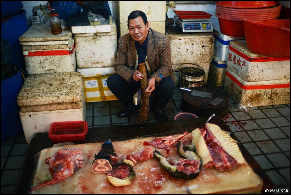 Digital Patrik Wallner_Shenzhen_Crocodile For Sale 1000P