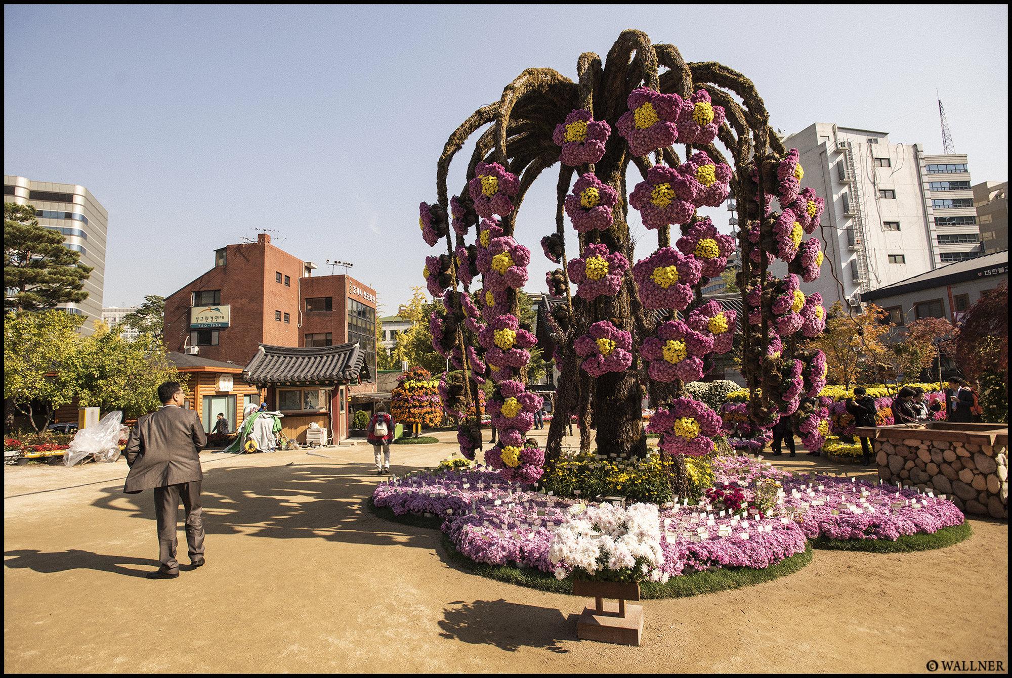 Digital Patrik Wallner Seoul Flower Tree LOWQ 2000P w WM