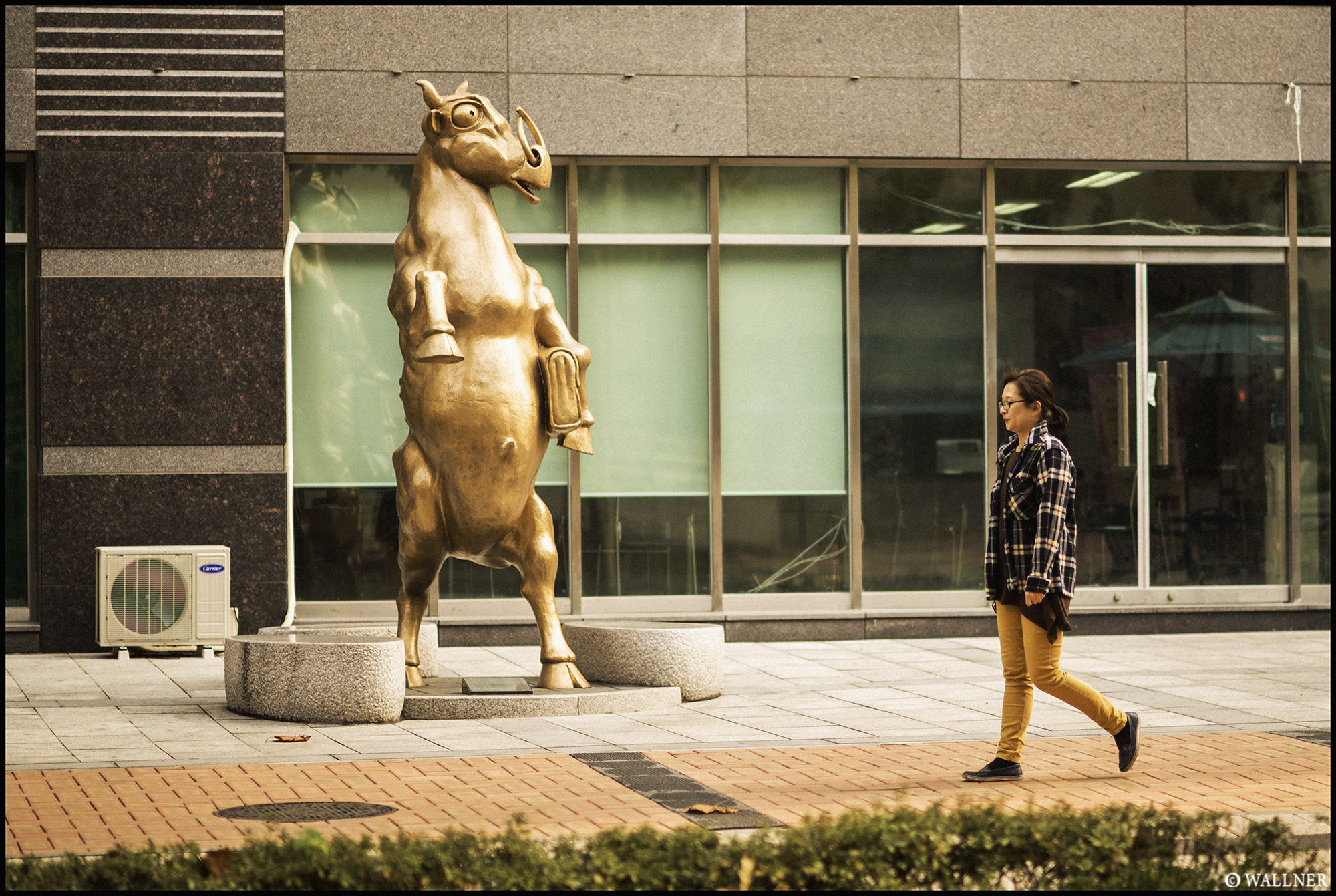 Digital Patrik Wallner Seoul Wall Street Bull LOWQ 2000P w WM
