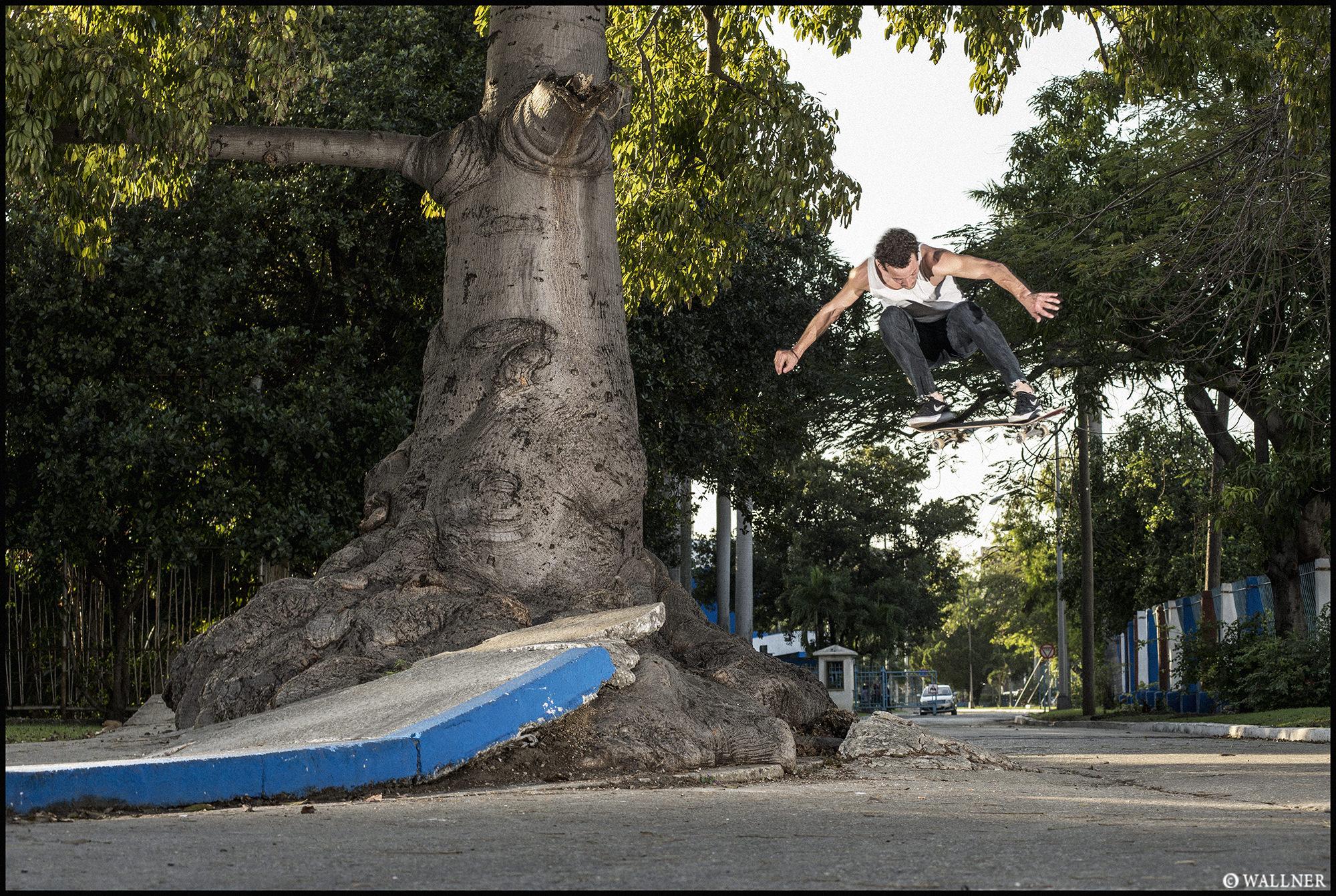 Digital Patrik Wallner Havana Michael Bs 180 Tree Kicker LOWQ 2000P w WM