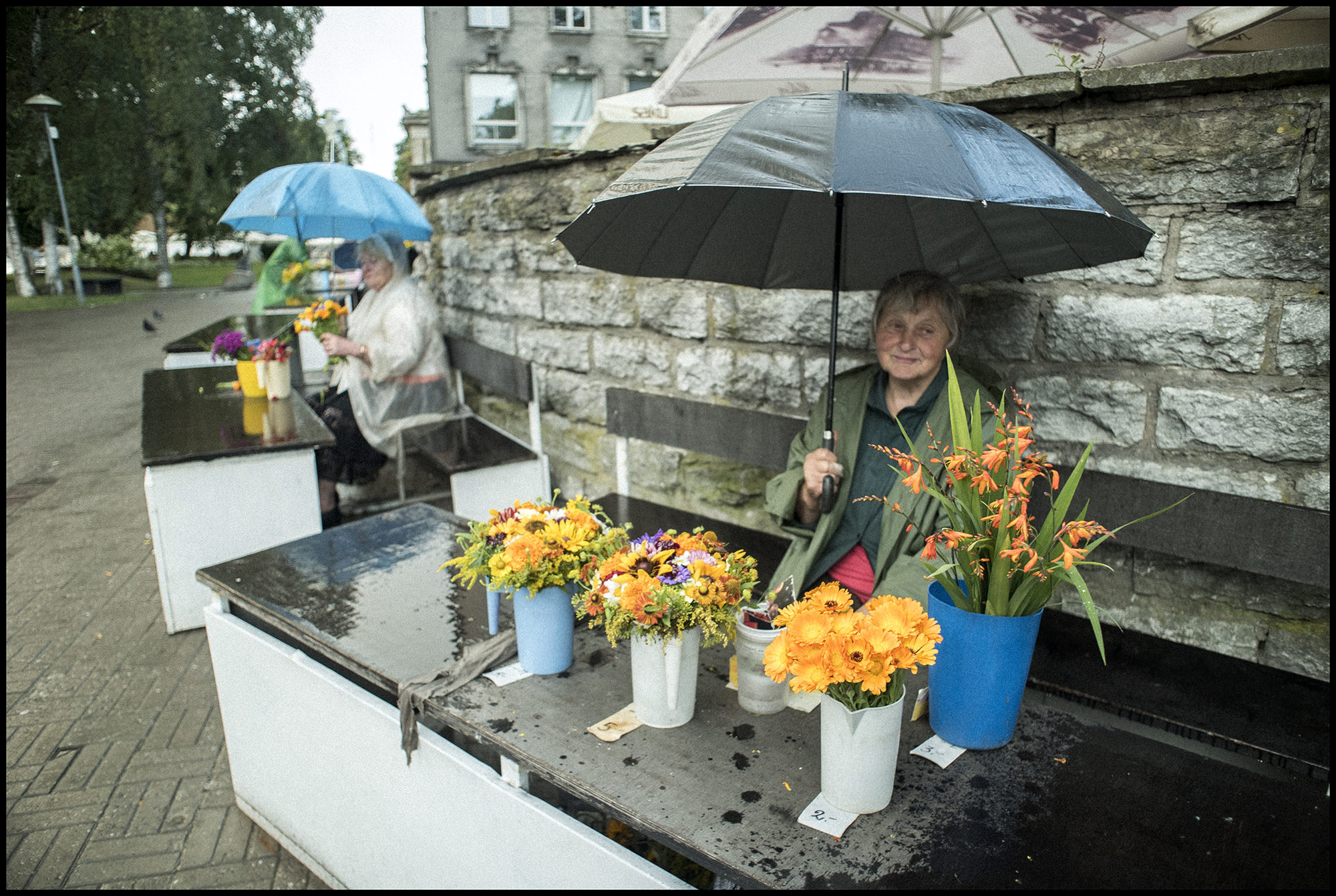Digital Patrik Wallner Tallinn Rainy Flowers LOWQ 2000P