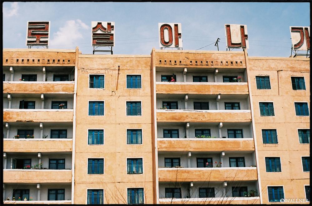 35mmPatrikWallner_Pyongyang_FlowerForTheLeaderLOWQ1000P