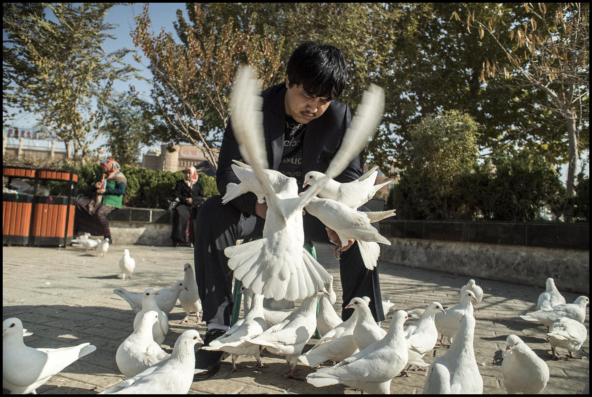 Digital Patrik Wallner Kashgar The Pigeon Man LOWQ 2000P