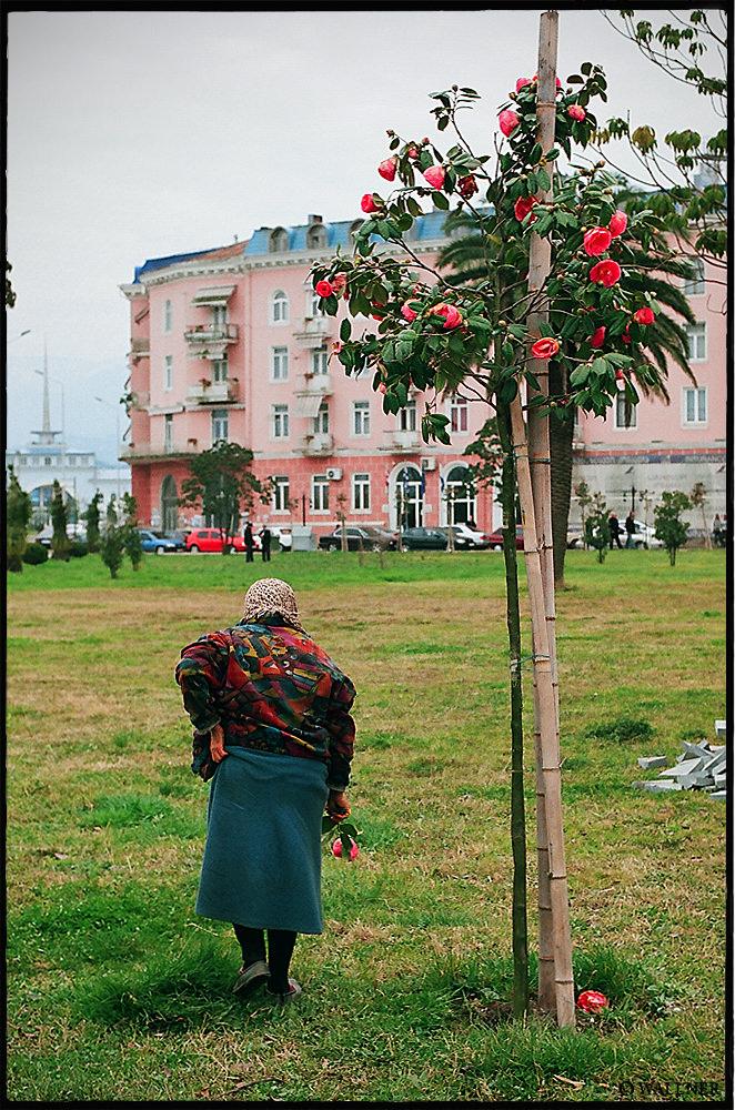 35mmPatrikWallner_Batumi_PickingFlowersLOWQ