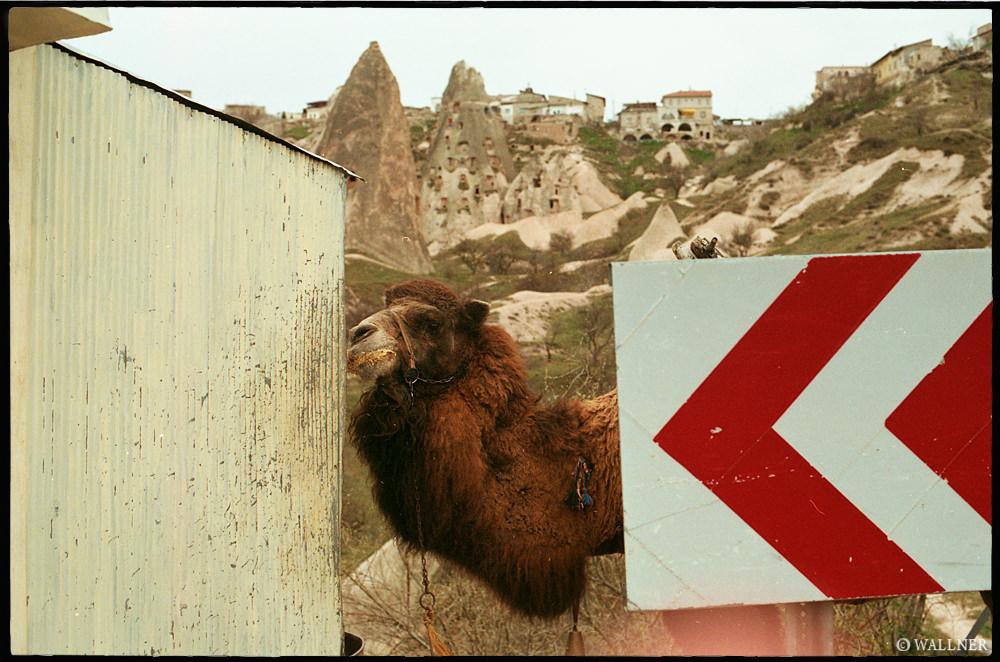 35mmPatrikWallner_Cappadocia_PikaBooLOWQ